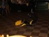 Kohout 12.11. večírek 013