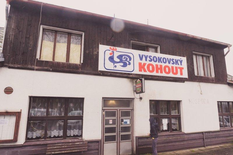 Vysokovsky_kohout001